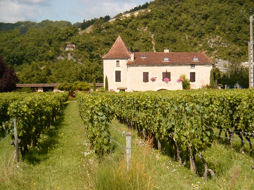 Cahors Wine Chateaux by FrenchDuck.