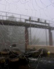 A spiders web in the foreground (:Linda:) Tags: autumn water ball river germany for town thringen october spiderweb drop thuringia cobweb dew droplet spinne spinnwebe weir wassertropfen tropfen thuringian werra trpfchen themar werratal sdthringenbahn thringisch