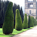 Chatsworth Topiary (or Weeble Hedges)
