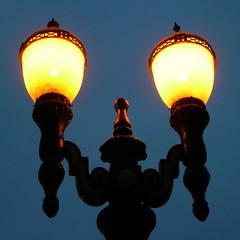 The coming of night (ancawonka) Tags: street blue lamp yellow topv111 twilight streetlight weeklysurvivor mc05negativespace weeklyblog17