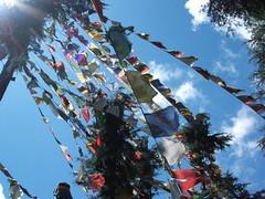 Prayerflags (lillylane) Tags: india lilly ganj mcleod
