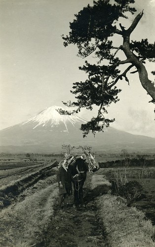 Mt Fuji 富士山 and Farm and Wood Gatherer by born1945