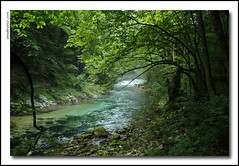 Trekking in the Vintgar Canyon (anbri22) Tags: slovenia slovenjia anbri vintgar gorge canyon water river acqua fiume gole ilovenature