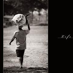 -= Life.... =-