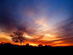 Saturated Skies (Trapac) Tags: blue autumn light sunset red england orange tree silhouette yellow downs bristol geotagged gold purple violet thedowns durdhamdown bristoldowns flickl geo:lat=51471219 geo:lon=2625765