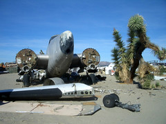 Follow Me (Telstar Logistics) Tags: ruins aircraft boneyard elmirage aviationwarehouse jetsetruin jetsetruins