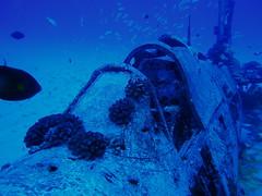 #1203 cockpit (Nemo's great uncle) Tags: airplane geotagged underwater scuba diving aeroplane hawai'i ハワイ o'ahu オアフ島 corsair hi wreck ダイビング mostcommented corsari explore26nov05 interestingness260 i500 水中 chancevoughtf4u geo:lat=21254283 geo:lon=157730833