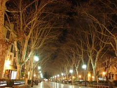 Palma by Night (pjebsen) Tags: espaa spain nightshot mallorca spanien majorca balearen balearicislands balears illesbalears balearischeinseln passeigdesborn