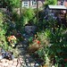 Linda Fraser: my finished garden in Summer