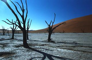 Sossus Vlei, Namibian desert