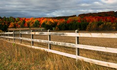 Harbor Springs in fall (snapstill studio) Tags: color fall harbor countryside highlands fallcolor michigan springs northern harborsprings boyne changingleaves petoskey northernmichigan boynehighlands martinmcreynolds nikonstunninggallery abigfave
