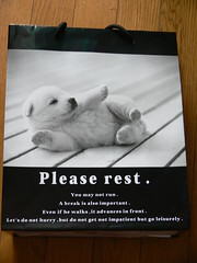 Please Rest (highglosshighs) Tags: japan puppy 2006 engrish  toyama february fukumitsu