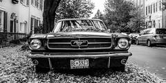 Mustang (Kazi.sumon) Tags: mustang ford classic muscle car dc washington street usa american