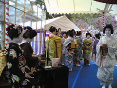 Geiko & Maiko / Tea Ceremony (Marie Eve K.A. (Away)) Tags: woman flower tree nature girl beautiful beauty festival japan lady hair nokia kyoto tea ceremony makeup maiko geiko geisha   kimono teaceremony accessories annual elegant nokia6630   elegance nodate plumblossoms  baikasai katsuya feb25  kanzashi  kitanotenmangushrine    february25th  katsuryu japanesecuties      outdoorteaparty plumblossomsfestival plumflowersfestival