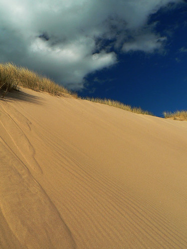 Dune by m.o.m.o..