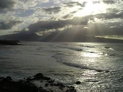 Maui Sunbeams
