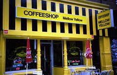 Mellow Yellow Coffee Shop, Amsterdam, Holland 1993 (Trig's) Tags: world city travel holland netherlands coffee amsterdam europe cities coffeeshop smoking adventure 1993 mellowyellow backpack redlightdistrict northernlights thaistick mellowyellowcoffeeshop mellowyellowcoffeeshopnetherlandseuropesmokingredlightdistrictcoffeeamsterdamhollandtravelbackpackworldadventurecitycities1993