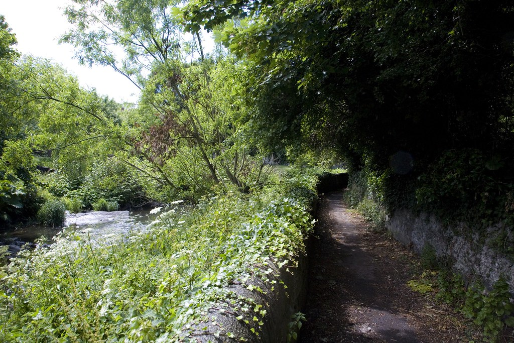 ALONG THE BANKS OF THE DODDER (Between Clonskeagh and Milltown)
