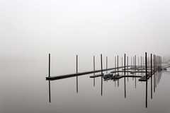Silent Morning (rowjimmy76) Tags: gloom fog weather december portland rain reflection silent minimal monotone negativespace overcast winter quiet willametteriver pdx pacificnorthwest pnw canon sigma18250mmf3563dcmacrooshsm landscape sl1 serene dock