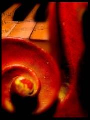 Duet (makunia) Tags: bravo searchthebest magicdonkey outstandingshots artlibre goldenphotographer flickrdiamond omghowfunnylollollol youarejusthystericallmaoloveyouo donusgatusnotquickerbutfascinatedbyyourwork