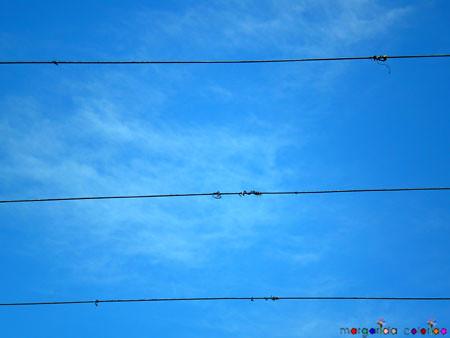 tempo | weather