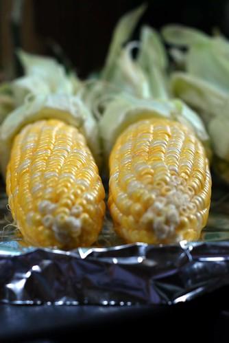 Sexy Corn