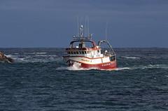 IMG_5415_Roberts Sisters II in Narrows2 (daveg1717) Tags: robertssistersii fishingboats boats thenarrows stjohnsharbour stjohns newfoundlandlabrador