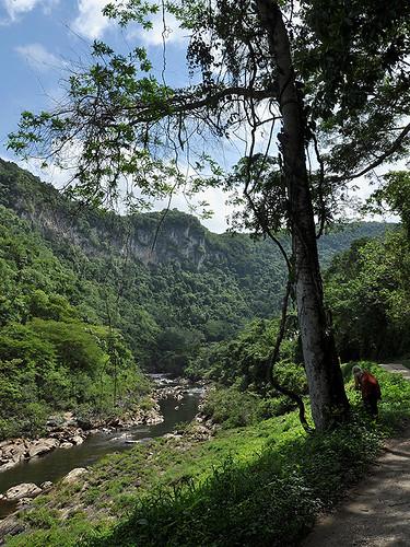 San Ignacio - Natural Flow