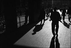 (artigiano) Tags: vienna wien street leica winter shadow people film blackwhite kodak trix scene menschen summicron schwarzweiss schatten gegenlicht leicam6 geometrie eislauf szene microphen