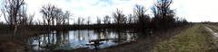 (Sinisa Palic) Tags: trees panorama nature water canon landscape scenery serbia panoramic swamp land rit priroda voda pancevo vojvodina srbija banat mocvara drvece pejzaz