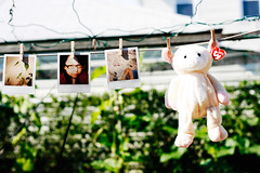 hanging.. (Mia Oh) Tags: canon garden polaroid spring sunny pins hanging polaroid600 beaniebabies clothespins pinned