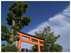 Blue Sky 070527 #04