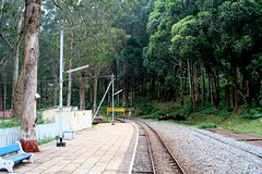 CNR_TO_OOTY-136