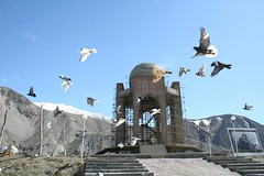 Birds in flight (shinz0) Tags: afghanistan mountains birds freedom pigeon afghan massoud mujahideen