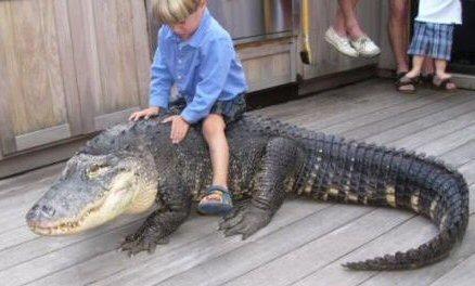 kid_on_croc