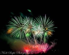 Global Fest 2016 - Phillipenes (ScopiePhotography) Tags: fireworks colours calgary alberta philippines globalfest 2015 beautiful eye catching breathtaking red pink green white people orange blue purple yellow