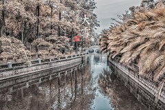 (tyskate00) Tags: white canon canon70d sigma lightroom photoshop landscape amazing cold river tree niceshoot niceview incredible fantastic hdr hdrcapture beautylandscape infrared infraredphoto