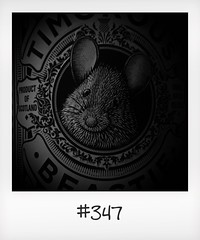 """#DailyPolaroid of 9-9-16 #347 • <a style=""""font-size:0.8em;"""" href=""""http://www.flickr.com/photos/47939785@N05/31412240681/"""" target=""""_blank"""">View on Flickr</a>"""