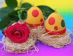 Vrolijk Pasen..... (Truus) Tags: easter pasen kleuren eieren truus