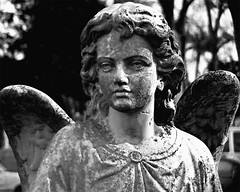 Speak (musicmuse_ca) Tags: 15fav friedhof cemeteries cemetery statue angel cementerio sanjose cemitrio speak cimetire cementerios cemitrios cimiteri cimetires friedhoefe oakhillmemorialpark terrytempestwilliams cimiteris