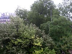 RainAgain2