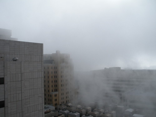 Cotton Bowl through the fog)