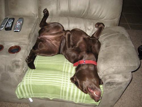Jenny Watching TV, upside down