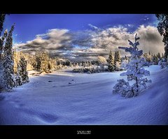 Winter Wonderland (SMGallery (MooreFoto.com)) Tags: nikon handheld hdr winterwonderland lakearrowhead d300 100faves 5exp outstandingshots colorphotoaward 105mm28fisheye smgallery lakearrowheadcountryclub nikond300
