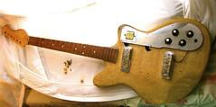 Project Tiesco with parts (lorac's) Tags: electric guitar heit teisco heitpickups vintageinstruments carolgoodman carolegoodman loracs loracdog contemporaryinstruments