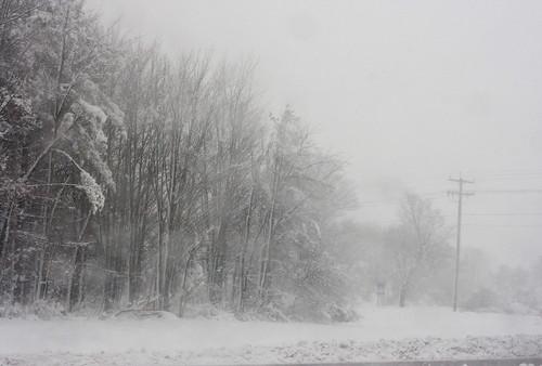 April Snow Shower