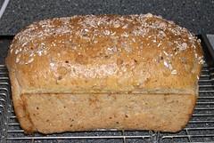 Rustic Grain Bread (Levine1957) Tags: bread brood beatriceojakangas