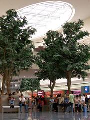 Indoor trees and natural lighting, good good. (Mickey I) Tags: sm mallofasia