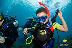 slu_bradh_V55A6102547 (kaufmankronicle) Tags: 2016 diving kidsseacamp stlucia