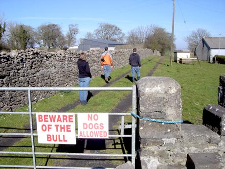 Moyne-Abbey-Entrance